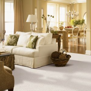 White Carpet in Living room | Johnston Paint & Decorating