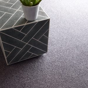Comfortable carpet | Johnston Paint & Decorating