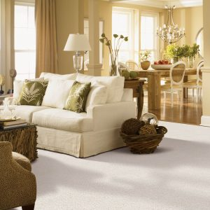 Gentle Approach of carpet | Johnston Paint & Decorating
