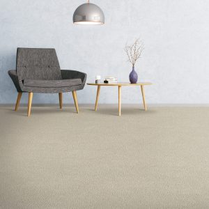 Comfortable carpet flooring | Johnston Paint & Decorating