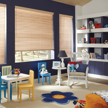 shades Window treatment | Johnston Paint & Decorating Hunter Douglas Window Coverings